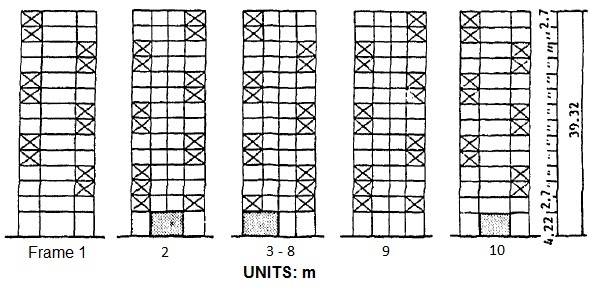 Elevations of the transverse frames (Adapted from Ohrui et al., 1988).