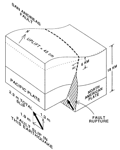 Schematic diagram showing the inferred motion on the San Andreas fault. (Borcherdt, 1990)