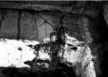 Shear failure in beam at face of angle connection in pre-cast frame building. Note deformation of bottom beam reinforcing. Column is to right (Wyllie, 1989).