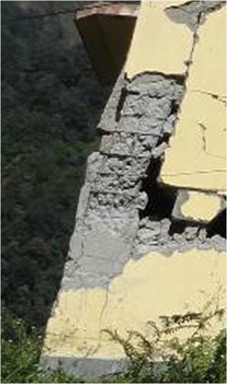 Closeup of the damage to the longest column of the lowest level (Sheth and Murty, 2012).