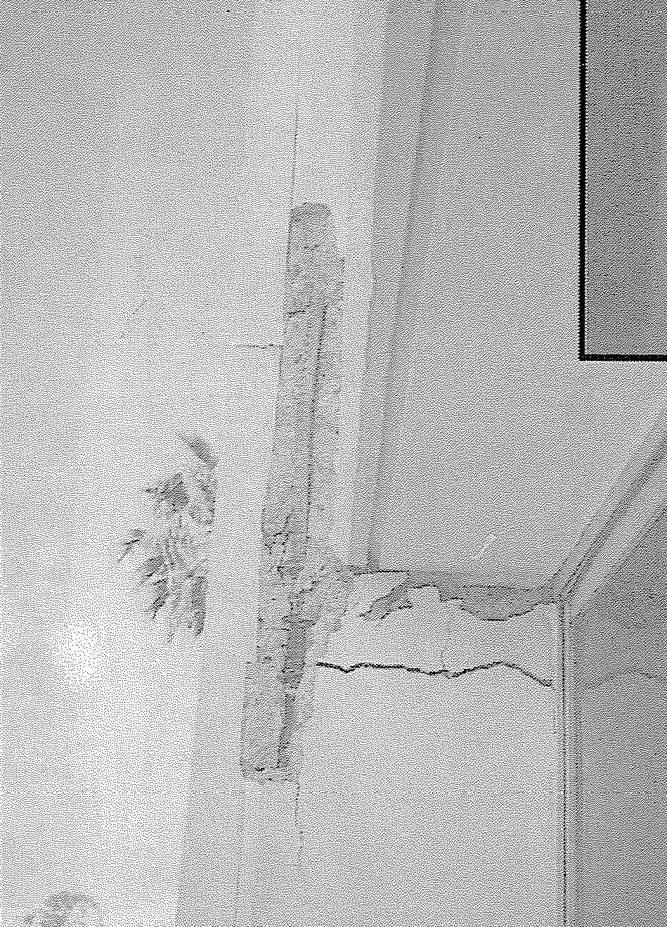 Close-up view of damaged exterior spandrel beam-column connection at fifth floor level. (SSC, 1994)