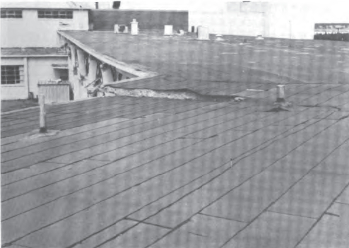 Roof-slab fracture near intersection of elevations C and D. (National Academy of Sciences, 1973)